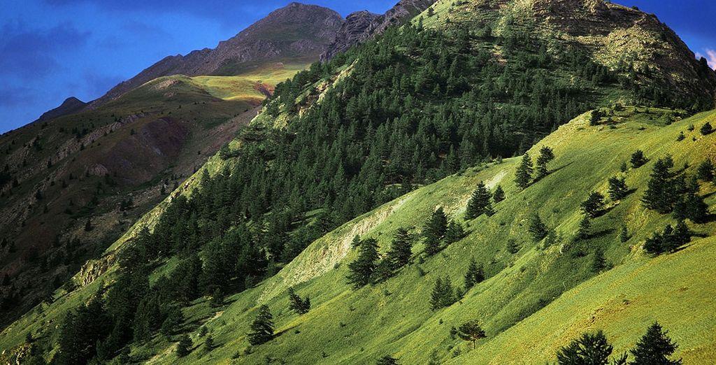 Bon séjour au coeur des Alpes !