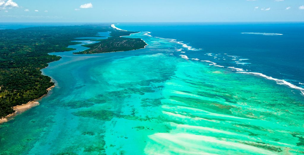 Une immersion totale dans la nature luxuriante de Madagascar, ça vous tente ?