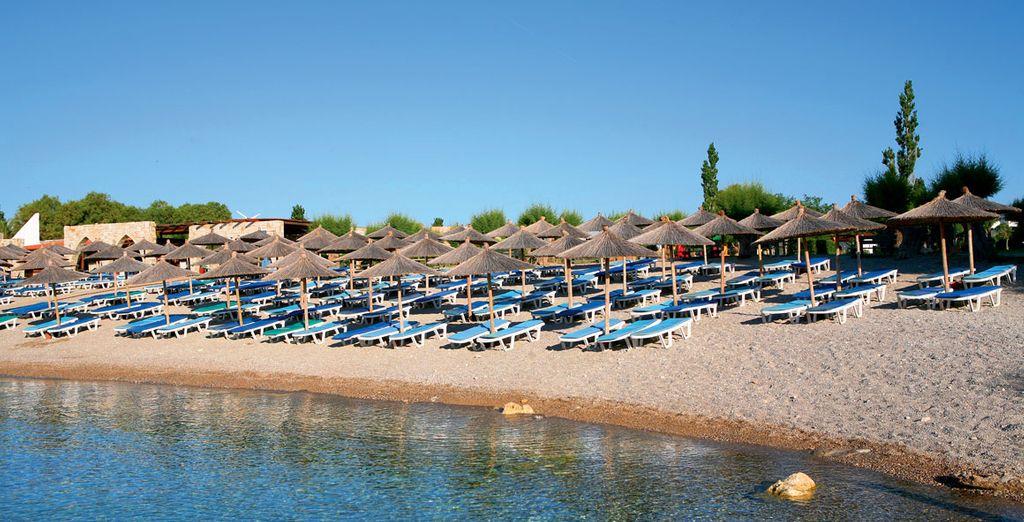 Vous aurez le loisir de vous prélasser au soleil sur la plage