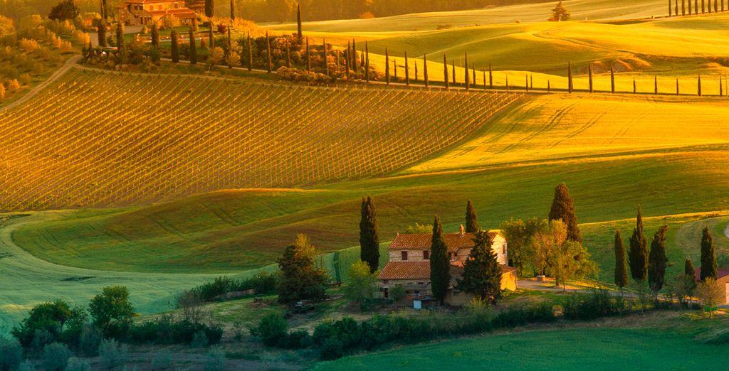 et découvrez son magnifique patrimoine et la beauté unique des lieux.