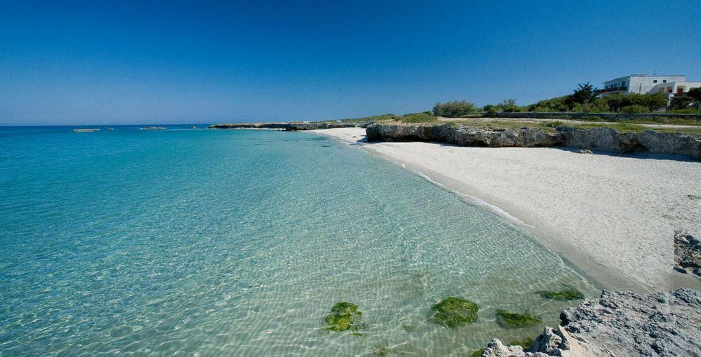 Laissez-vous flotter dans les eaux cristallines de la mer Adriatique