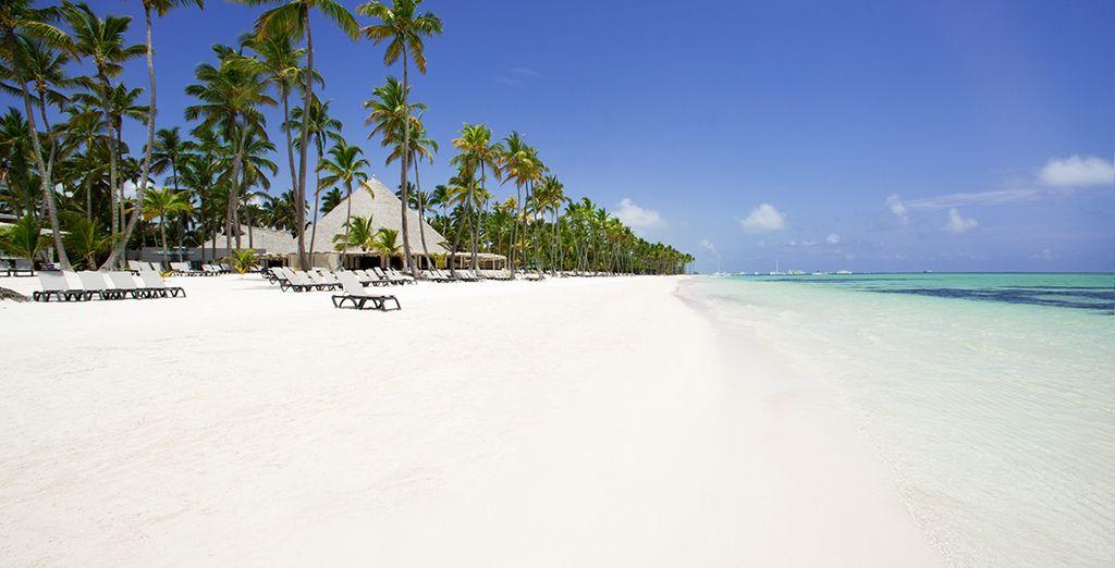 Envolez-vous pour l'une des plus belles plages de l'île : Playa Bavaro... - Hôtel Barcelo Bavaro Beach Resort 5* Punta Cana