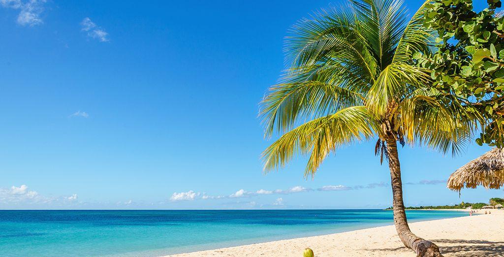 Vous prélasser sur des plages de sable blond