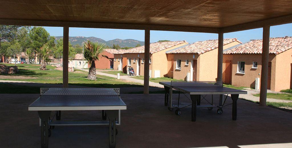 Entamez une partie de tennis de table