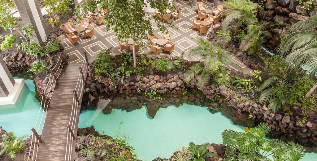 Entre piscines, mer et lagons