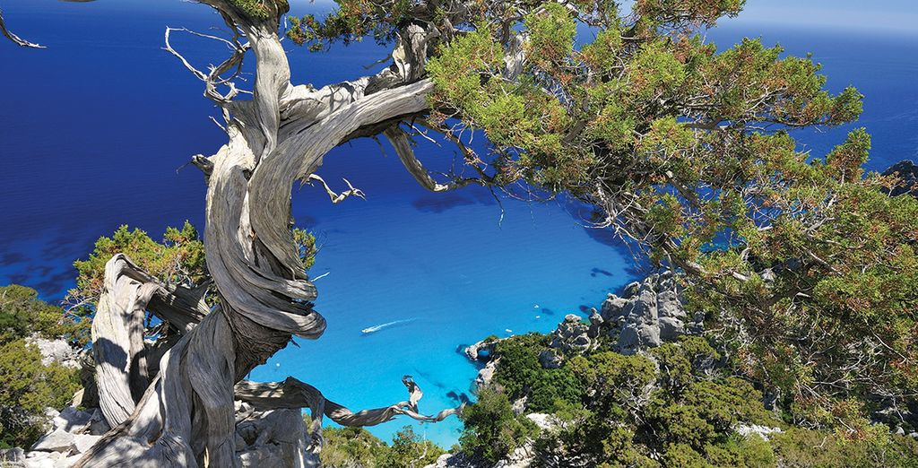 Envolez-vous avec nous en Sardaigne...