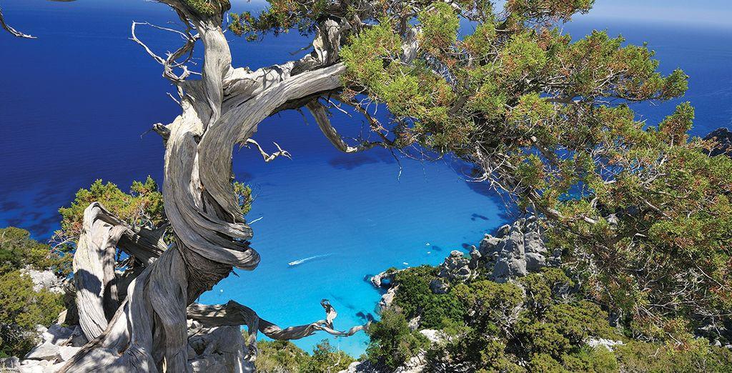 Envolez-vous avec nous en Sardaigne... - Arbatax Park Resort Cottage 4* Arbatax