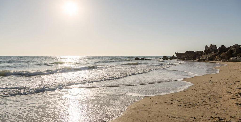 Situé à deux pas de la plage, sur la Costa de la Luz