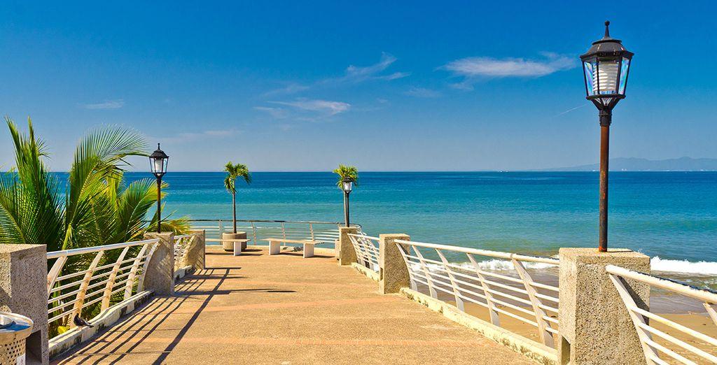Suivez-nous à Puerto Vallarta !