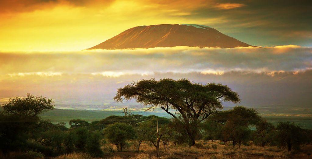 Photographie de paysage offert par les parcs naturels du Kenya