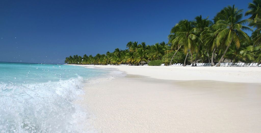 Et si vous partiez à la découverte de la Jamaïque ?