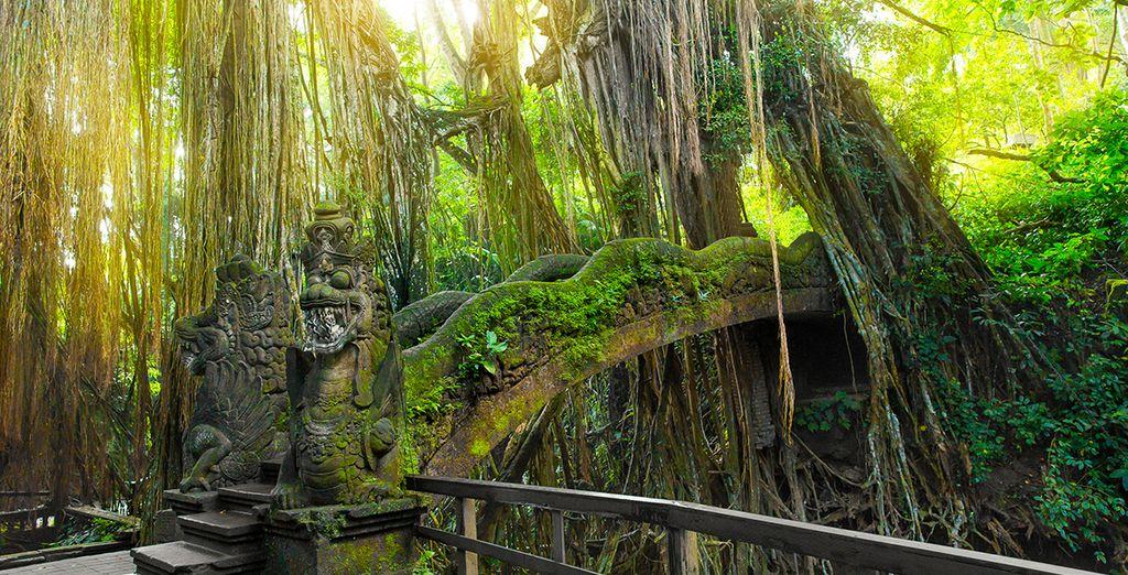 La journée, profitez-en pour découvrir Ubud, le centre culturel de l'île