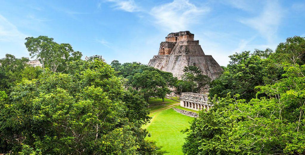 Envie de plus de découvertes ? Choisissez de débuter votre séjour en explorant le Yucatan
