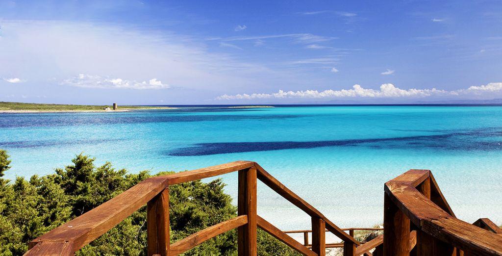 Et découvrez cette île sous son meilleur jour !