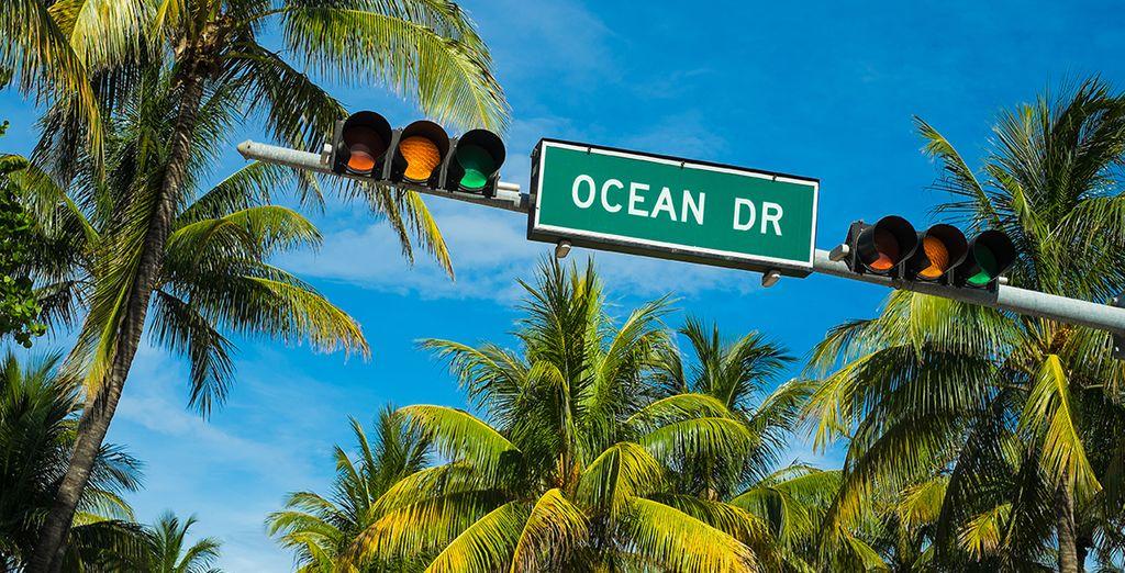 D'Océan Drive...