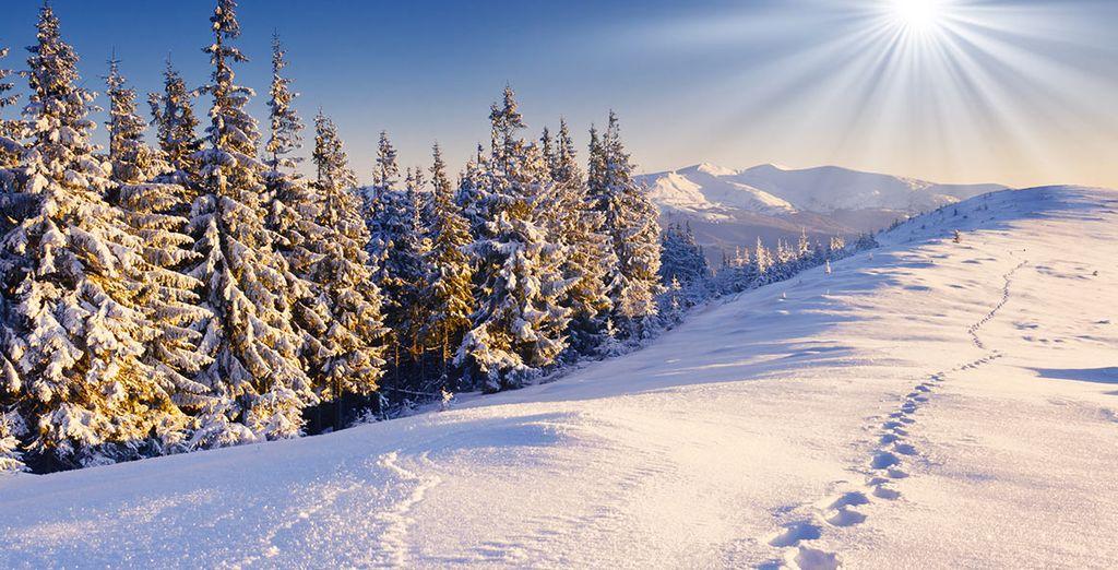 La vallée de la Vanoise avec Voyage Prive