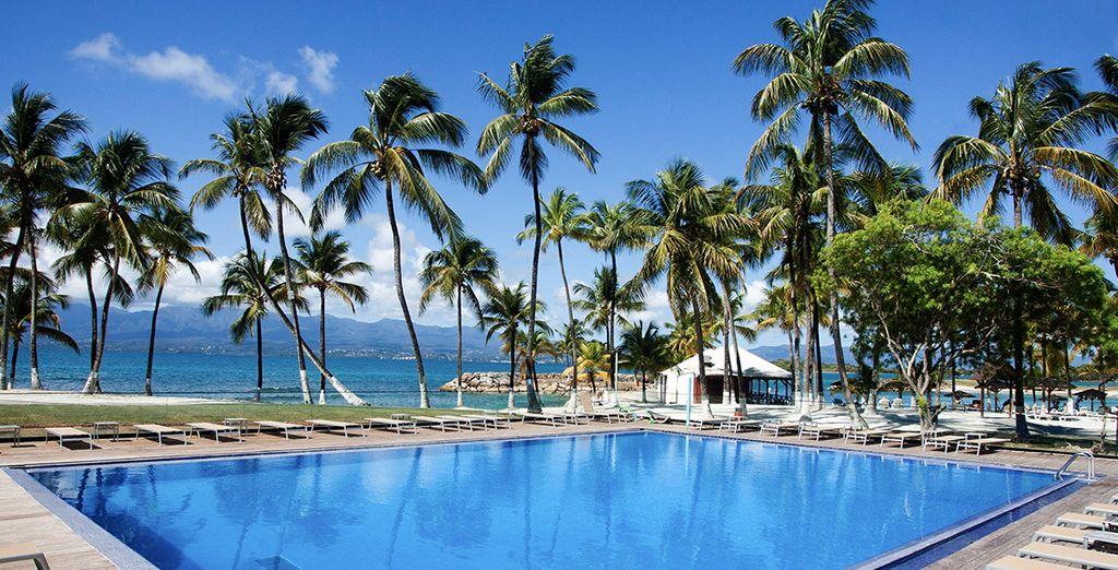 Mettez les voiles direction la Guadeloupe !