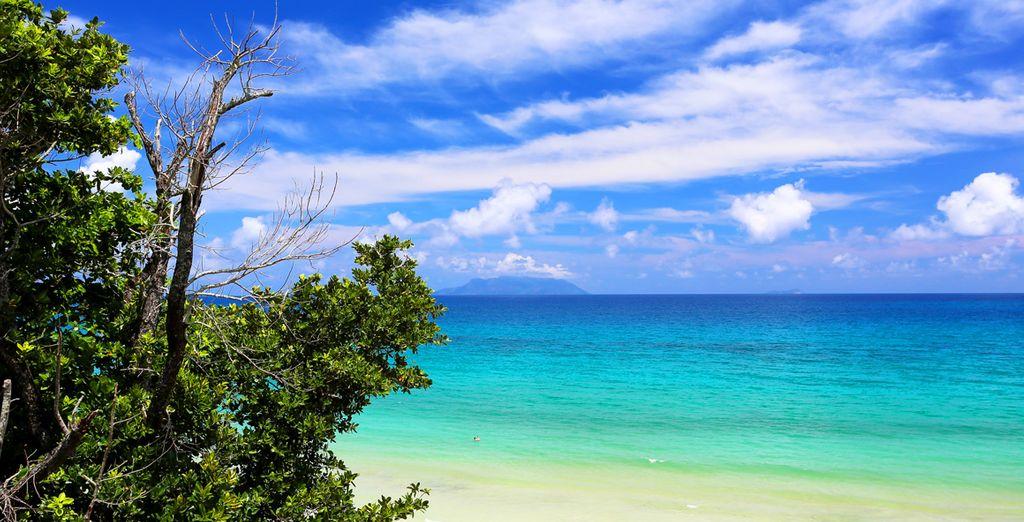Ou sur la plage de sable fin de Beauvallon