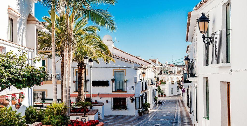 Découvrez les trésors de l'Andalousie
