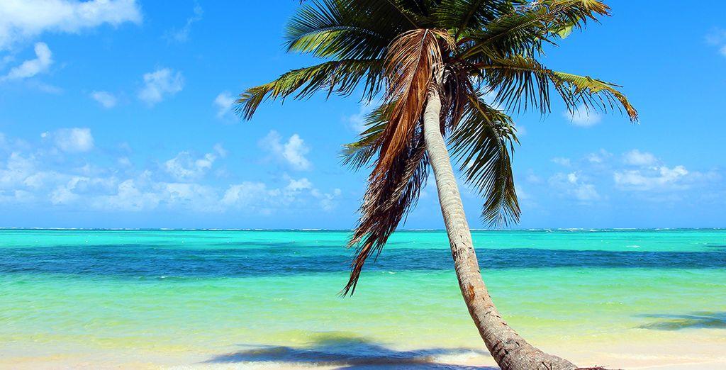 Prenez du bon temps au bord de la plage