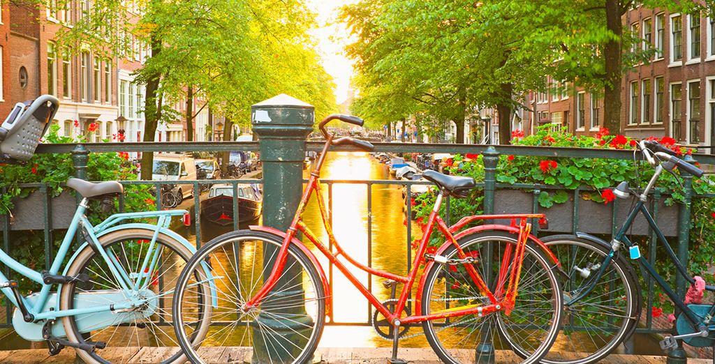 Photographie de la ville d'Amsterdam aux pays bas et de ses canaux verdoyant