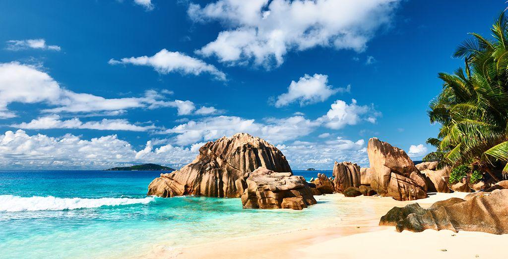 Bonnes vacances aux Seychelles !