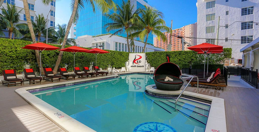 Avis Hotel Red South Beach Miami