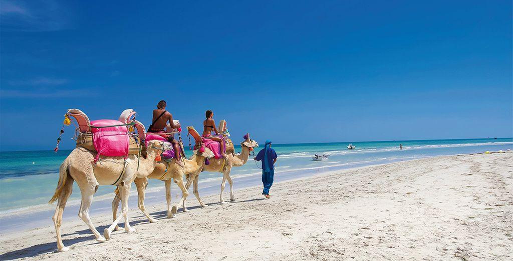 guide voyage tunisie