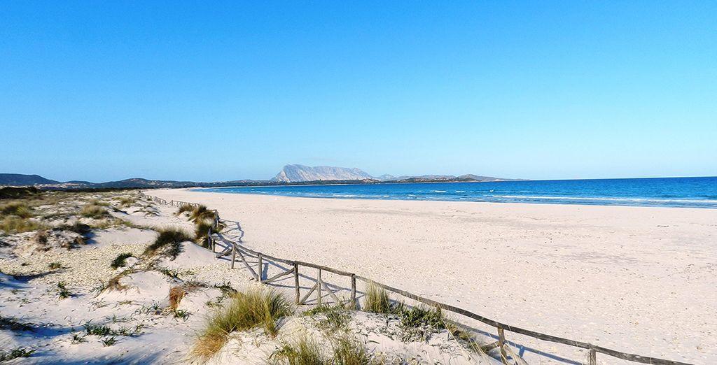 Plage de sable blanc en Sardaigne