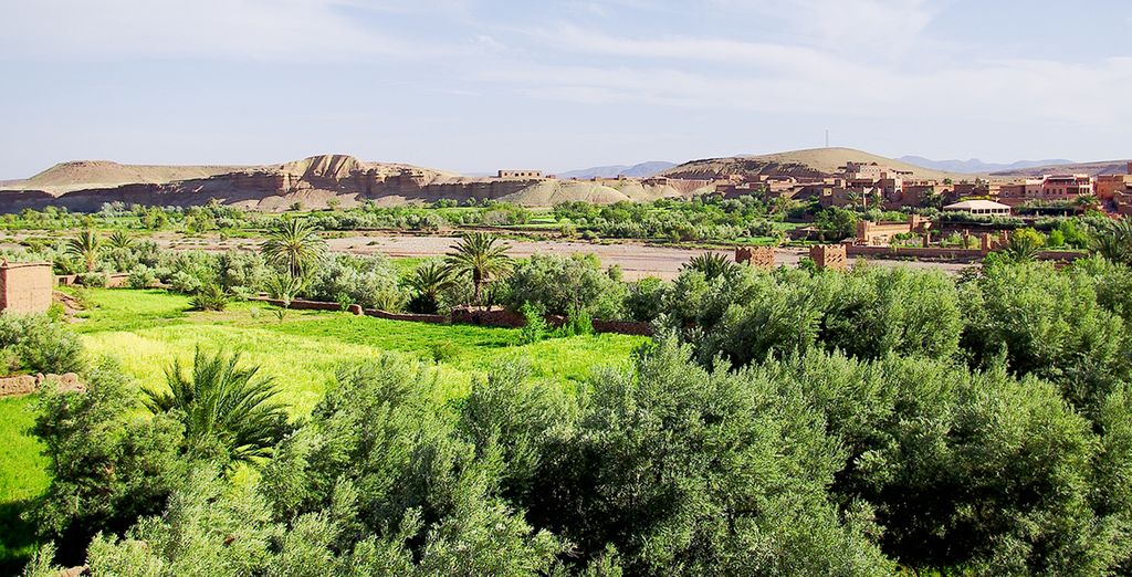 Un moment en pleine nature au coeur de la Palmeraie de Marrakech