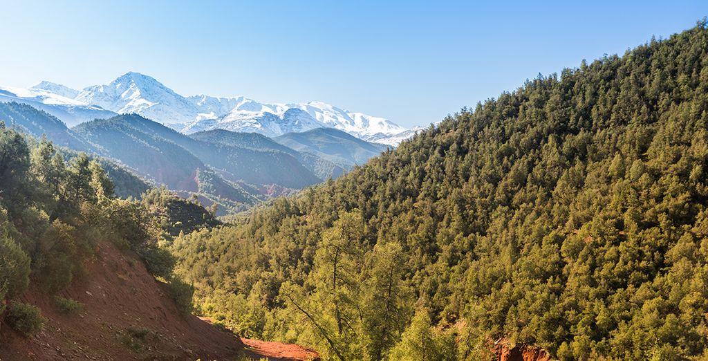 Faites une belle promenade en plein nature à Marrakech