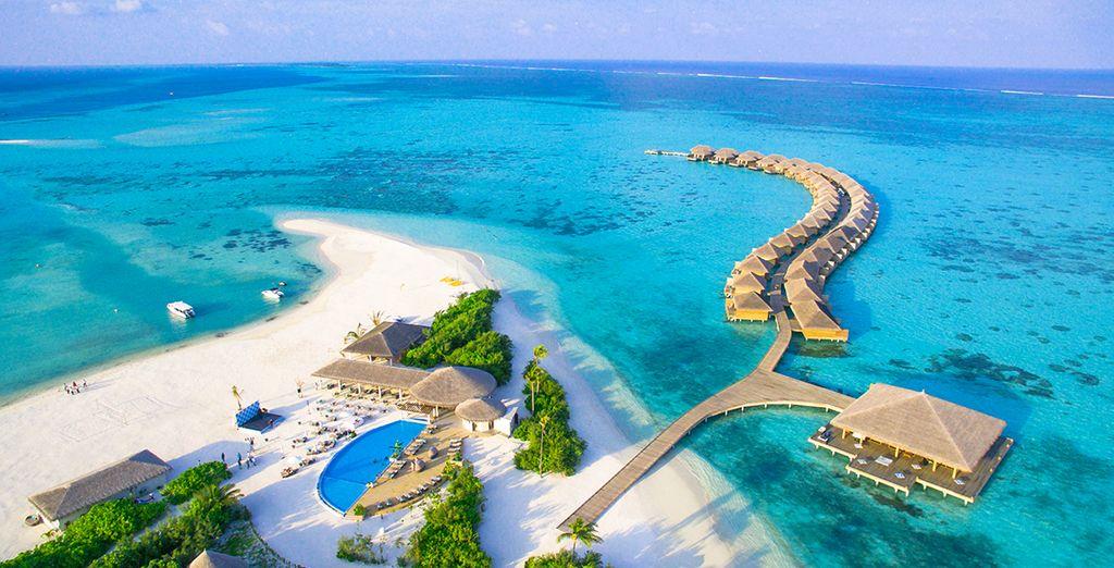 Hôtel Cocoon Maldives 5* avec Voyage Privé
