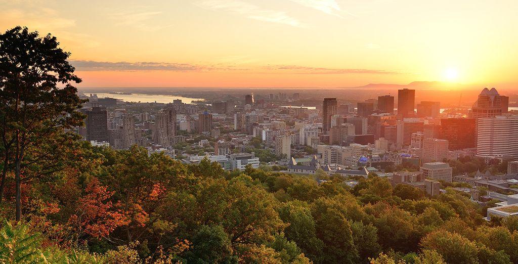 Rejoignez la grande île de Montréal