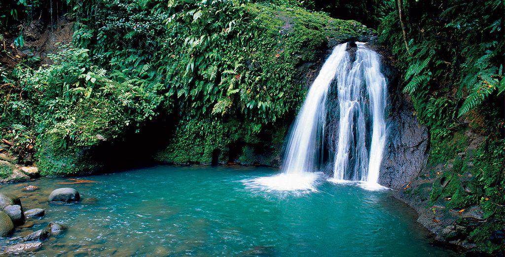 De la cascade aux Ecrevisses