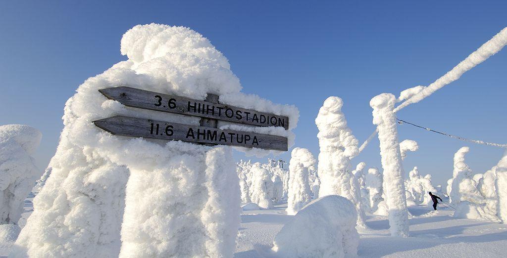 En route pour les terres éternelles... - Châlets au village Arctique de Salla - 5 jours / 4 nuits Kuusamo