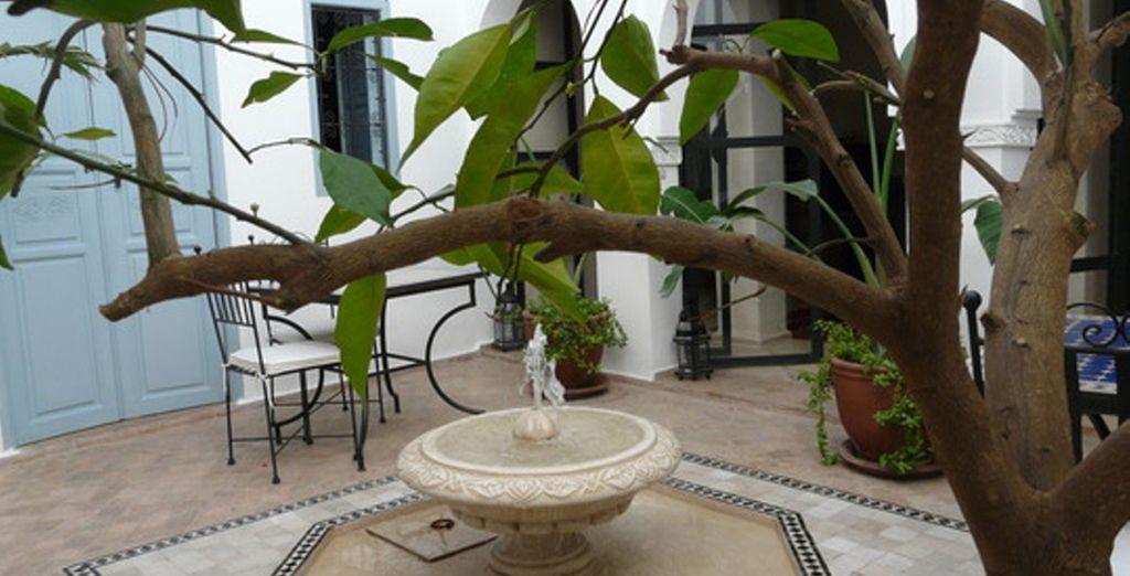 Au Riad l'Orange Bleue, vous découvrirez un magnifique patio marocain... - Riad L'Orange Bleue & Nikki Beach Marrakech