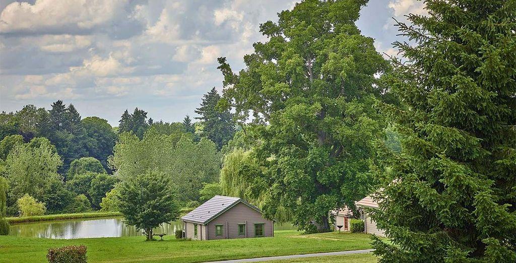 Vous y passerez d'agréables moments entouré de verdure et de jolis paysages... - Résidence du Domaine du Grand Bois Gimouille