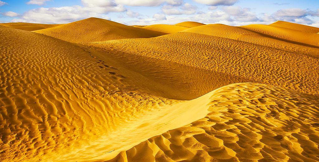 Photographie des dunes du désert du Sahara