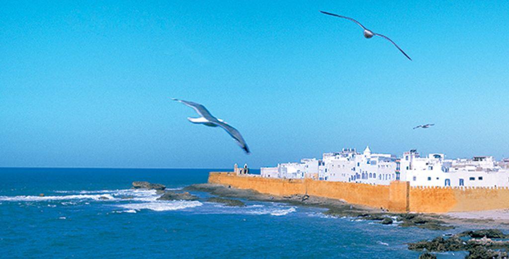 L'ancienne Mogador vous attend - Riad Maison du Sud Essaouira