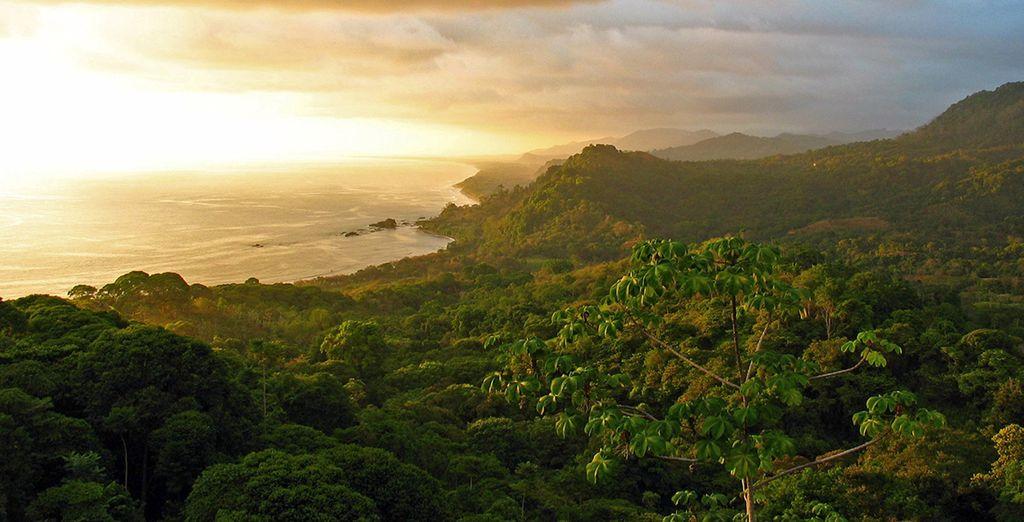 Réalisez votre rêve : envolez-vous pour le Costa Rica !