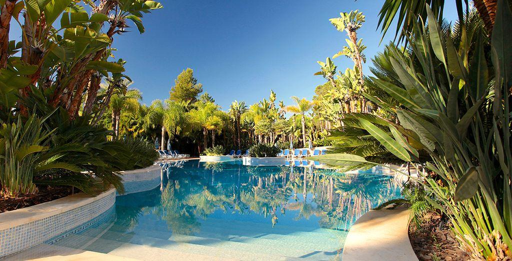 Découvrez votre hôtel Ria Park & Spa 5*