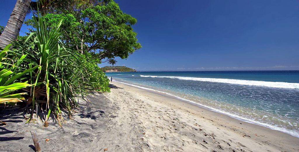 Et vous aurez même le privilège de visiter l'île préservée de Lombok