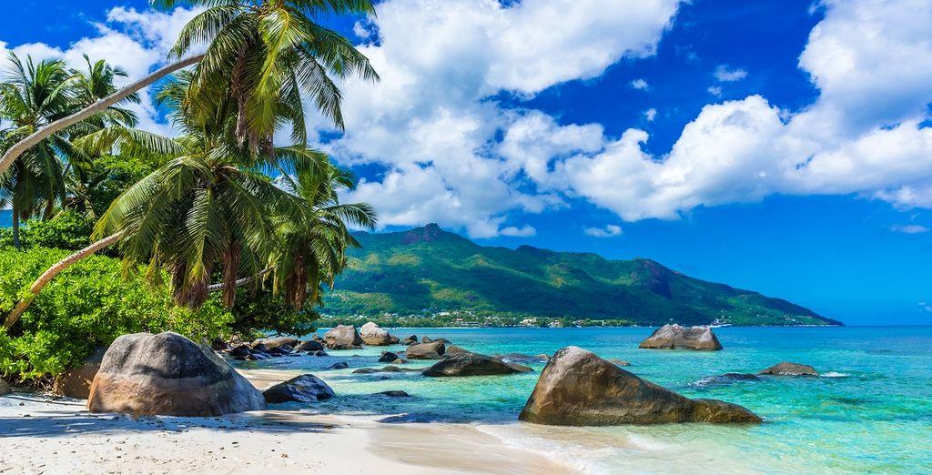 Croisière en catamaran dans les Seychelles