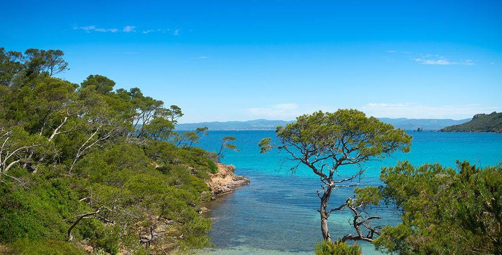 Envie de découvrir les plus belles côtes du Sud ?