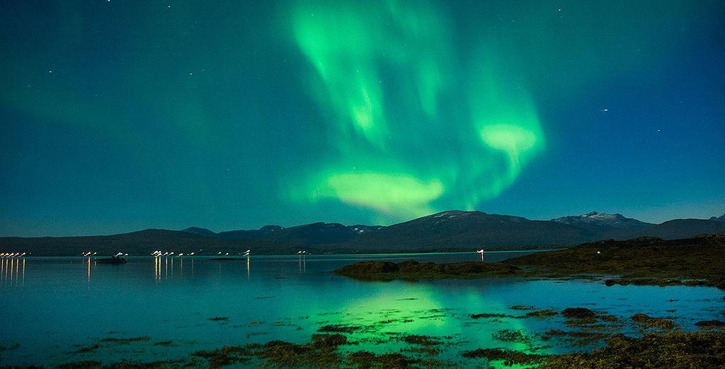 A la poursuite des éphémères aurores boréales