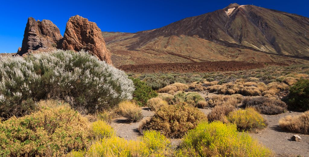 Photographie du parc national du Teide