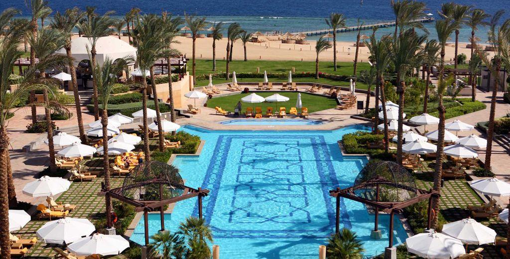 Installez-vous au The Palace Port Ghalib 5*