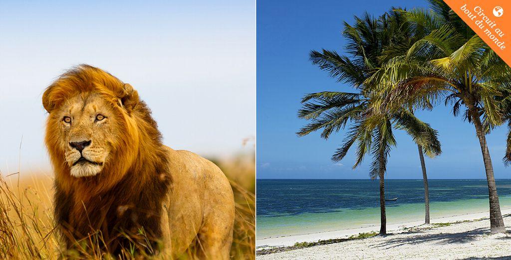 Offrez-vous un émerveillement permanent ! - Safari Masai Mara et plage au Baobab Beach Resort & Spa 4* Nairobi
