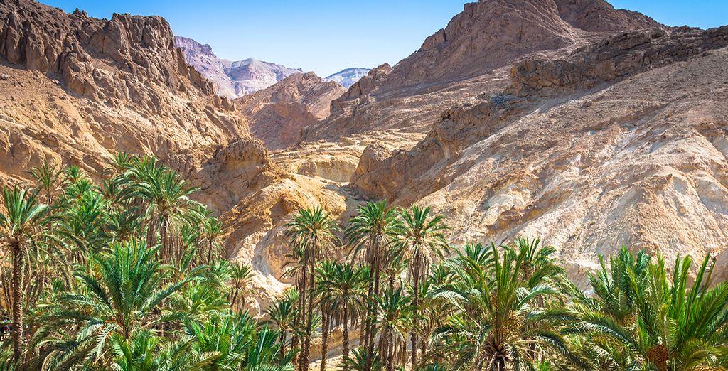 Montagnes de Tunisie et village