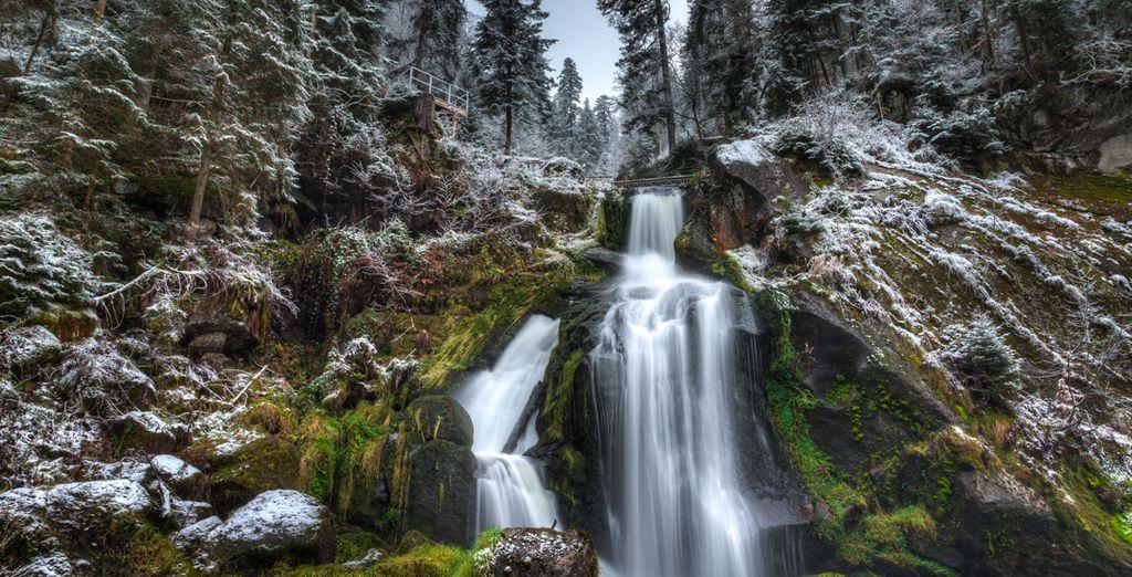 Photographie des cascades de Triberg en Allemagne